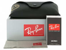 Solglasögon Ray-Ban RB4202 - 607313